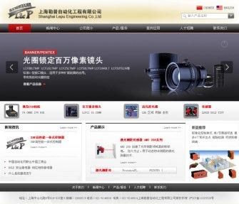 蚌埠品牌网站建设 勒普自动化网