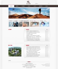 海南企业集团网站建设案例 睿泰