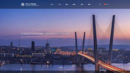 济宁企业宣传型网站建设 麦亮实